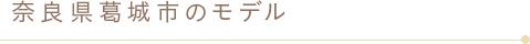 コールセンター、キーパンチャー、封入、デバックのアウトソーシング、業務委託なら 奈良県葛城市のモデル